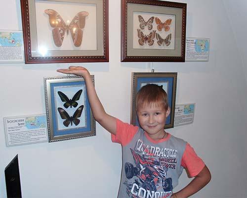 на выставке бабочек